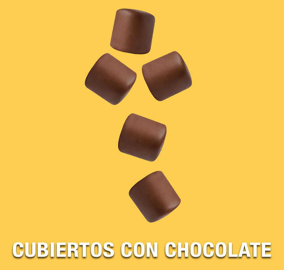 cubiertos con chocolate